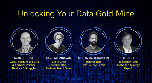 Overcoming Data Science Challenges: Expert Panel