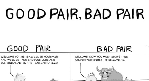 Good Pair, Bad Pair