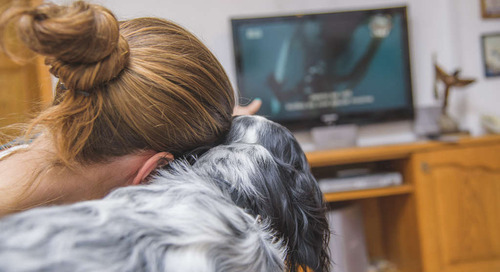Your Dog Can Finally Be Your Movie Date at This Texas Theater