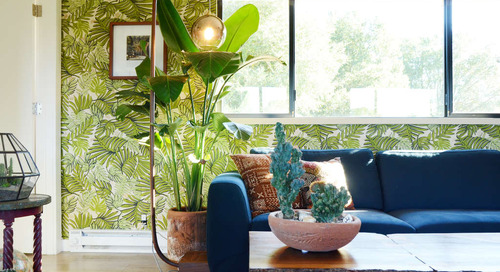 5 of My Favorite Tropical Plants, Because Winter Is Dead to Me