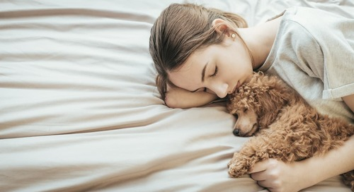 A New Study Shows That Dogs Feel Stressed When Their Owners Do