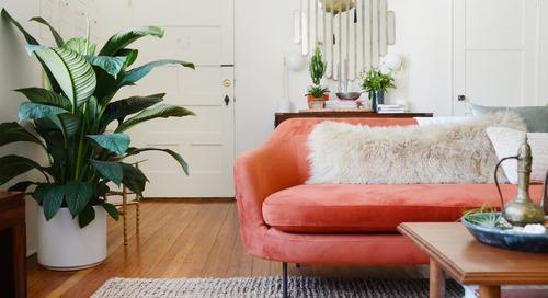 This Quick Routine Will Make Your Sofa Look and Feel Brand New