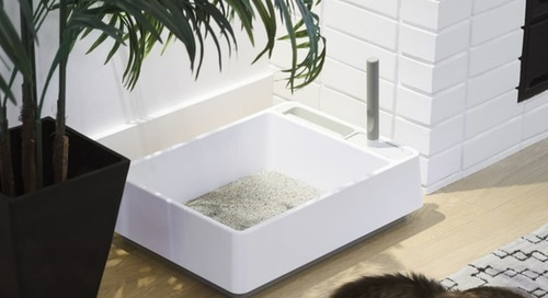 Cat Furniture Brand Tuft and Paw Is Making Litter Boxes Easy-to-Clean and Even Beautiful
