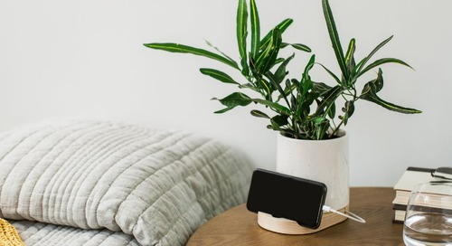 This Etsy Find Is a Minimalist Planter and Docking Station All In One