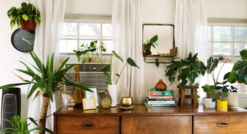 Anthropologie's Latest Sale Is a Plant Lover's Dream Come True