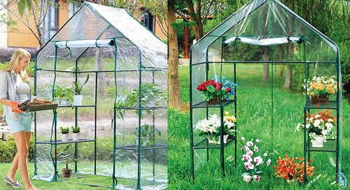 Amazon Is Selling a Portable Greenhouse for Less Than $40