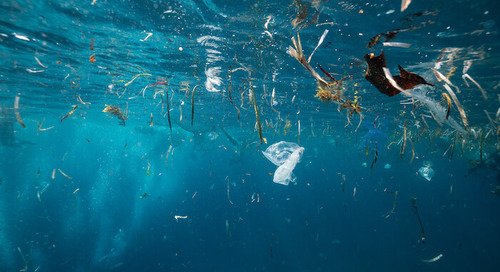 Solving the Plastic Problem Is More Than a Global Mandate—It's an Opportunity