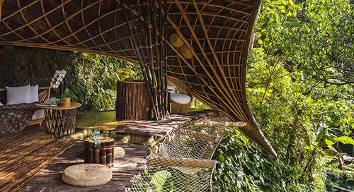建材としての竹が実現するカーボンネガティブな建築