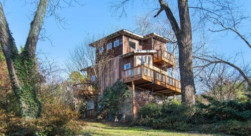 Elaborate new Airbnb treehouse takes root near East Atlanta Village
