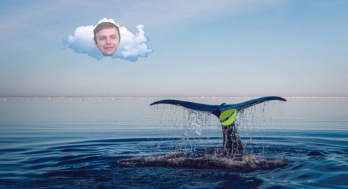 EOS community fights back against 'whales' controlling its blockchain