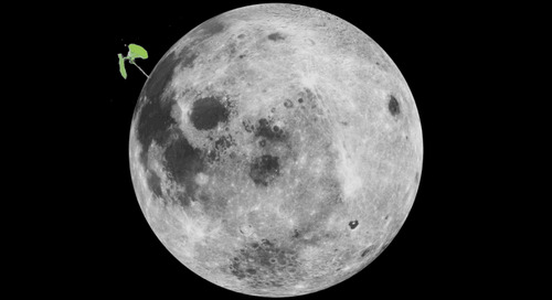 A cotton seed sprouted – and died – on China's Lunar Lander