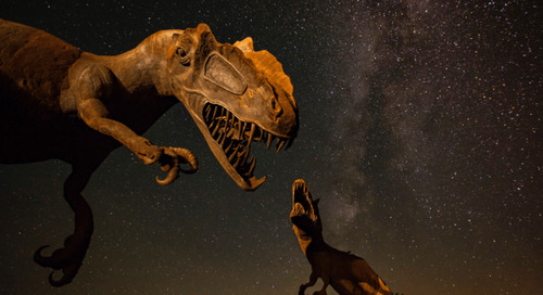 Five reasons why 2018 was a big year for paleontology