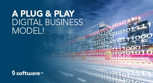 A Plug & Play Digital Business Model