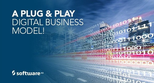 A Plug & Play Digital Business Model