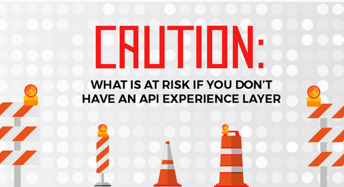 Caution: What's at Risk if You Don't Have an API Experience Layer