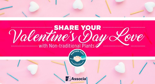 Partner Post: Share Your Valentine's Day Love with Non-traditional Plants