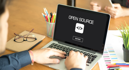 A Developer's Guide to Managing Open Source Risks