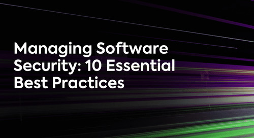 Managing Software Security: 10 Essential Best Practices [Infographic]
