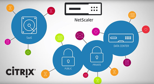 Citrix NetScaler Security