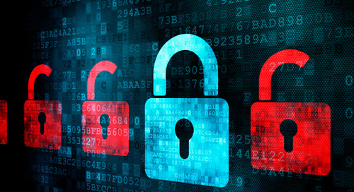 Case Study: Minimize Risk with A Safe Haven for Customer Data