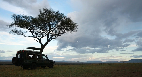 How Are Game Drive Vehicles Made?