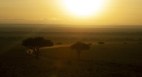 5 Reasons to Join Masai Mara Wildlife Photography and Videography Classes