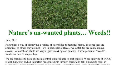 Nature's Un-Wanted plants… Weeds!!