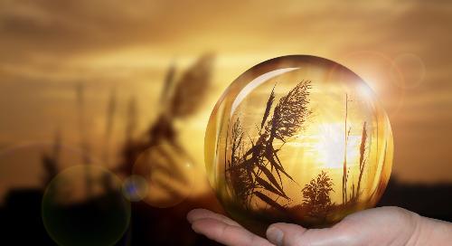 RSE et Achats responsables : 7 prédictions à suivre de près en 2021