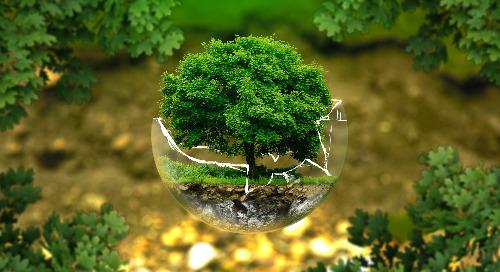 Lutte contre le greenwashing et l'écoblanchiment, de l'importance des preuves
