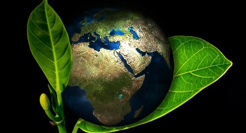 Pacte mondial pour l'environnement, bientôt une étape décisive à l'ONU