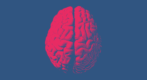 No-Code and the Human Brain