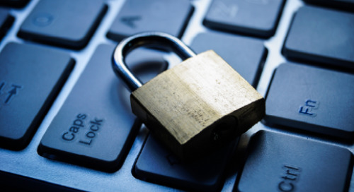 Understanding the Advantages of the Shared Security Model