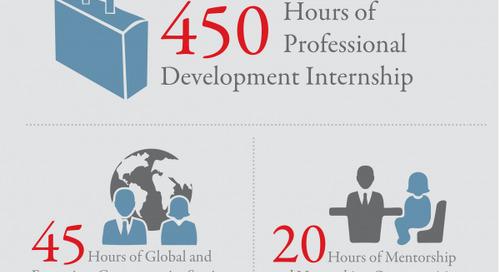Global Competencies Program Components