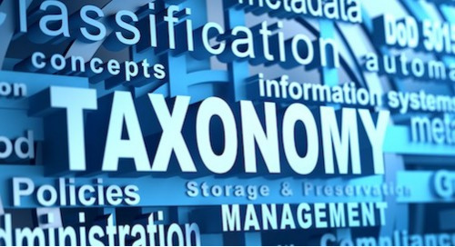 Why You Need a Data Taxonomy