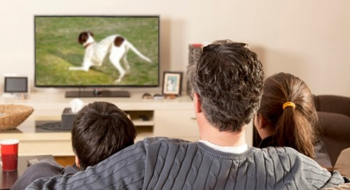 Make Your TV Ad Dollars Work Harder