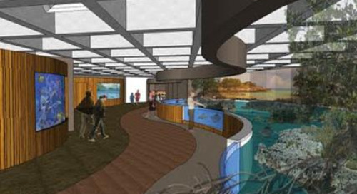 Sharks, rays and SketchUp at the New England Aquarium
