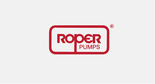 Roper Pump Enhances Security Posture Using Arctic Wolf for Security Operations