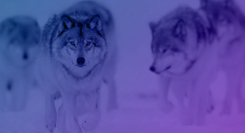 Hunting with the Pack: Cyber Threat Hunting and Counterintelligence