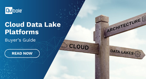 2020 Cloud Data Lake Platforms Buyers Guide