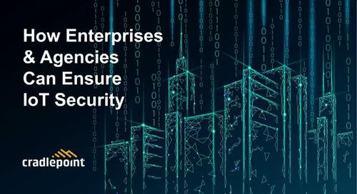 How Enterprises & Agencies Can Ensure IoT Security