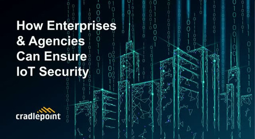 How Enterprises & Agencies Can Ensure IoT Security