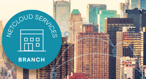 Branch Connectivity Services —APAC