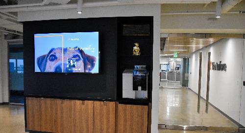 Dogs on Screens: Cheering up the Office one pet at a Time