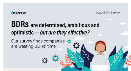 BDRs are a BFD Infographic