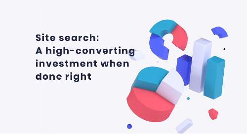 Site search research from Digital Commerce 360