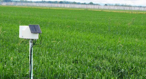 Agriculture as fertile ground for technological innovation