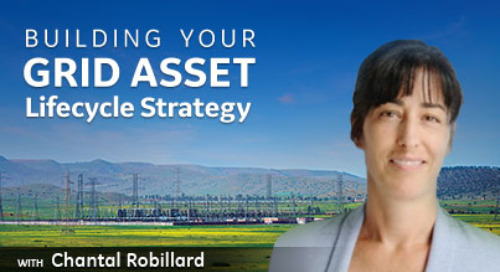 Building Your Grid Asset Lifecycle Strategy