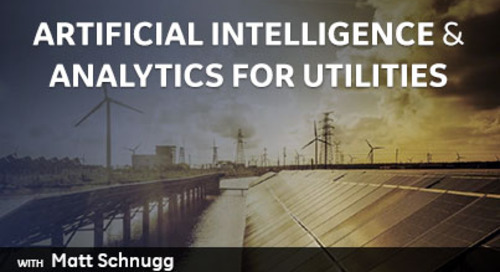 Artificial Intelligence & Analytics for Utilities