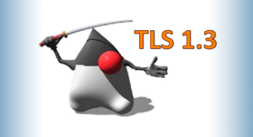 Keeping Network Traffic Safe in JDK 8 with TLS 1.3