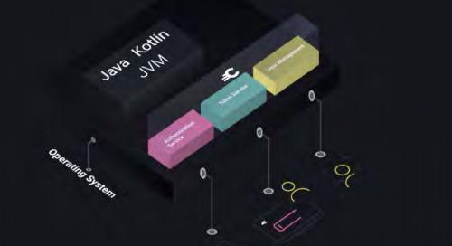 Case Study - Curity Identity Server